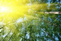 Синоптики дали прогноз погоды на выходные