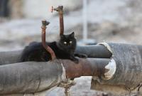 """80% столичных теплосетей находятся в аварийном состоянии, – """"Киевтеплоэнерго"""""""